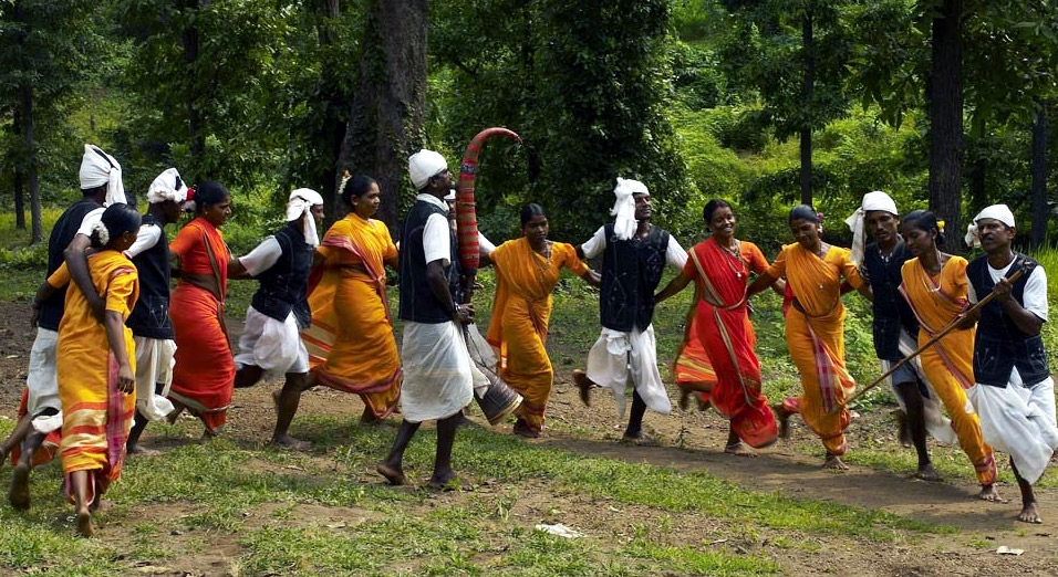 Tarpa, Traditional Dance Form of  Dadra and Nagar Haveli
