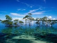 Andaman and Nicobar Islands